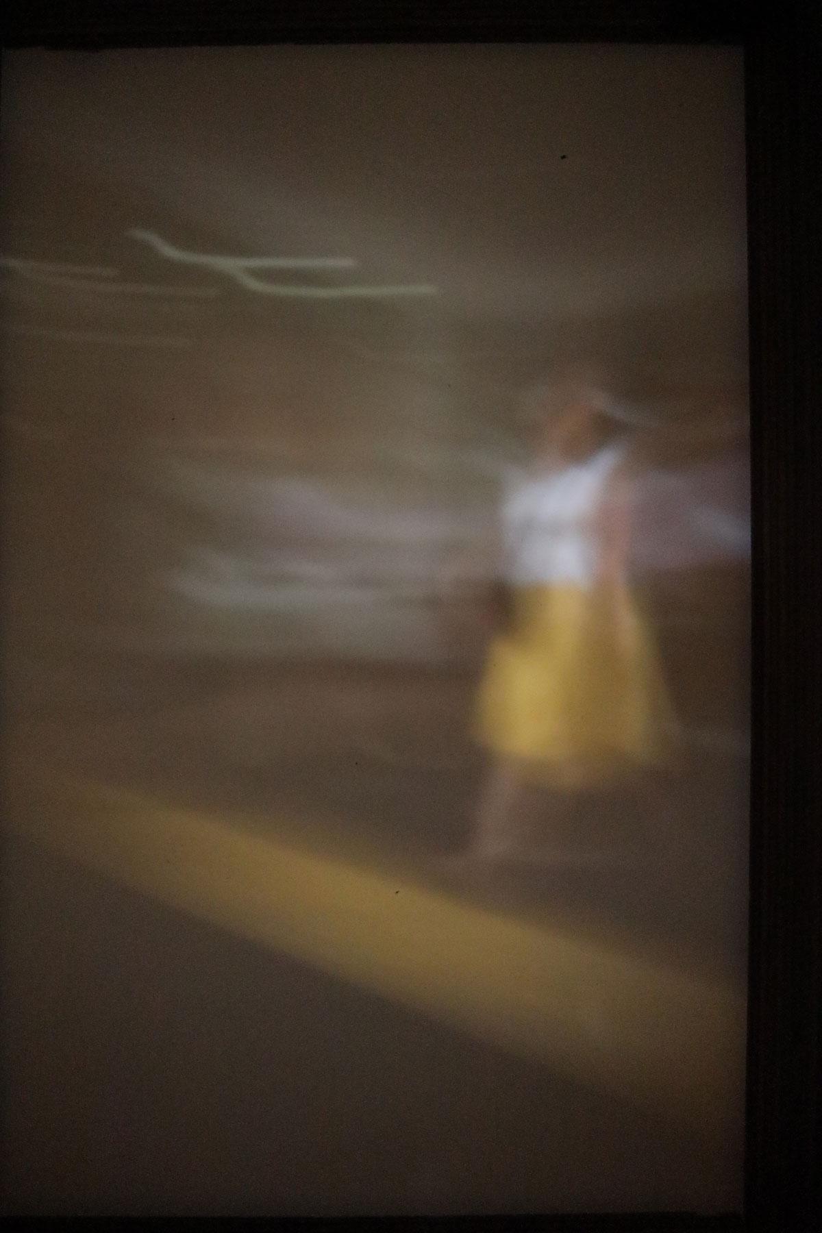 23 | new zealand series | 2020 | Camera Obscura | Pigmentdruck auf Alu-Dibond