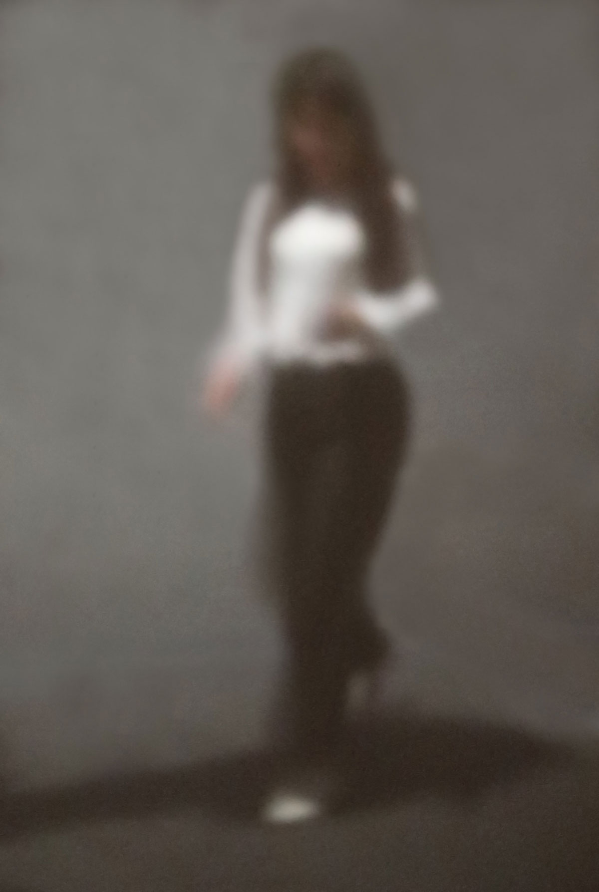 26 | new zealand series | 2020 | Camera Obscura | Pigmentdruck auf Alu-Dibond