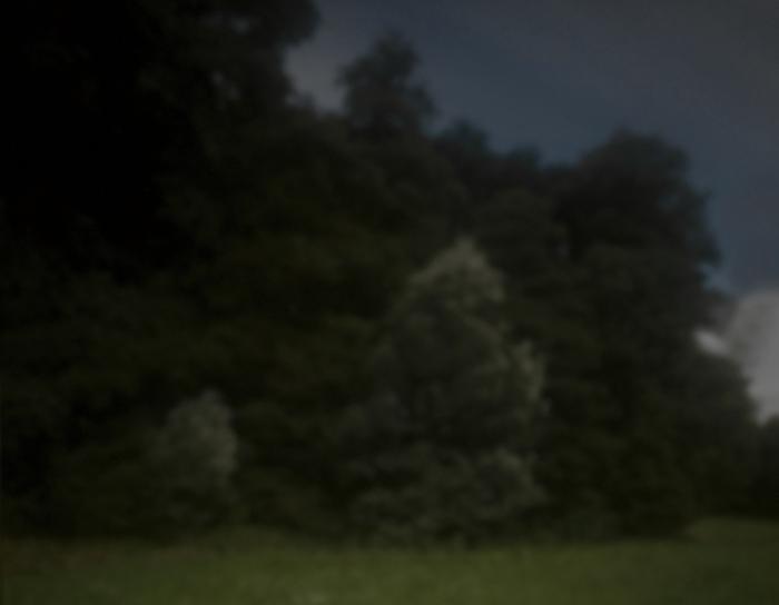 Waldstück, Eifel | 2012 | Camera Obscura | Pigmentdruck auf Alu-Dibond | 140 x 180 cm