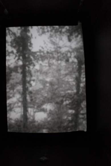 Bergdesgadener Land I | 2015 | Camera Obscura | Pigmentdruck auf Alu-Dibond | 150 x 200 cm