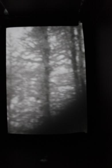 Bergdesgadener Land II | 2015 | Camera Obscura | Pigmentdruck auf Alu-Dibond | 150 x 200 cm
