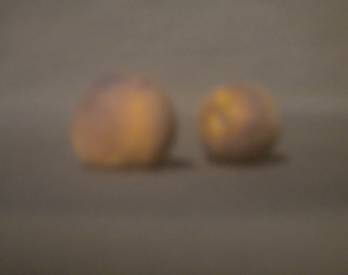 Zwei Pfirsiche | 2012 | Camera Obscura | Pigmentdruck auf Alu-Dibond | 40 x 30 cm